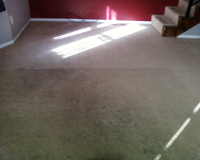 Cleaning Carpet St. Louis